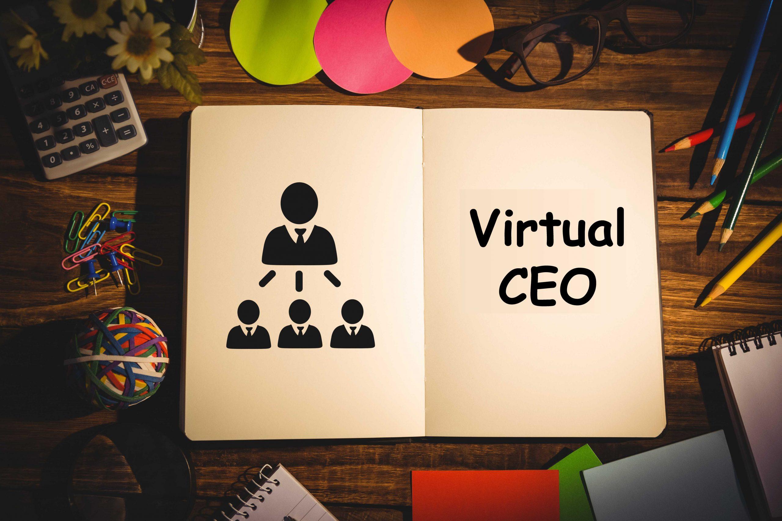 Virtual CEO